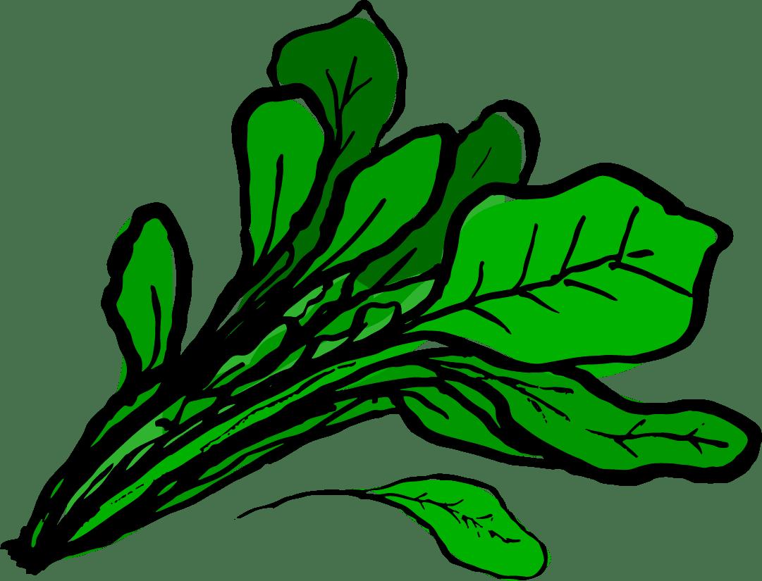 Design A Kitchen Winter Infinity Foods